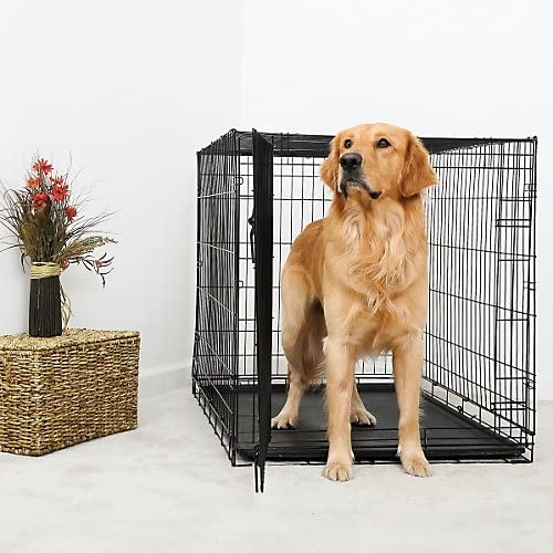 DuraCrate Limited time for Choice free shipping Folding Dog Crate