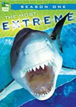 Best the most extreme season 1 episode 1 Reviews