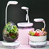 HORTICAN Intelligent Planter Growing System, Indoor Garden Starter Kit with LED Grow Light, Smart Garden Planter for Home Kitchen (White)