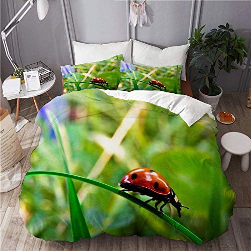 Jnsio Duvet Cover Little Walking Ladybug 100% Washed Microfiber 3pc Bedding Set with 2 Pillow Shams for Hotel Bedroom Decoration C1581