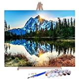 "AOLIGE DIY Plaid Oil Paint by Numbers for Adults Acrylic Canvas Framed and Easel 16"" x 20"" (Silent Mountain Lake)"