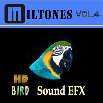 Hd Bird Sound Efx