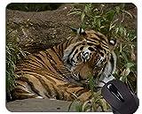 Yanteng Tiger Que Juega en el cojín de ratón del Juego del Agua, Cojines de ratón del Tigre con...