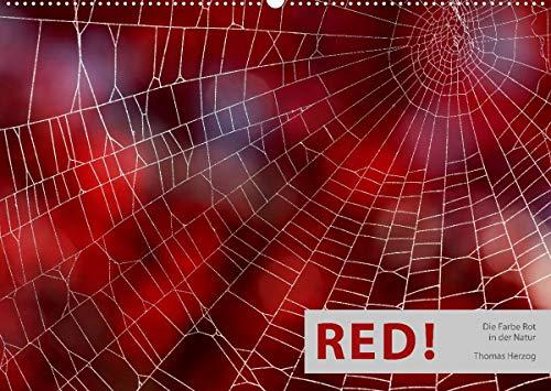 RED! (Wandkalender 2022 DIN A2 quer): Die Farbe Rot in der Natur (Monatskalender, 14 Seiten )