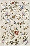 HAMID - Alfombra Florencia Diseño Clásico Floral - Alfombra Acrilica con Base Antideslizante (D3, 90x60 cm)