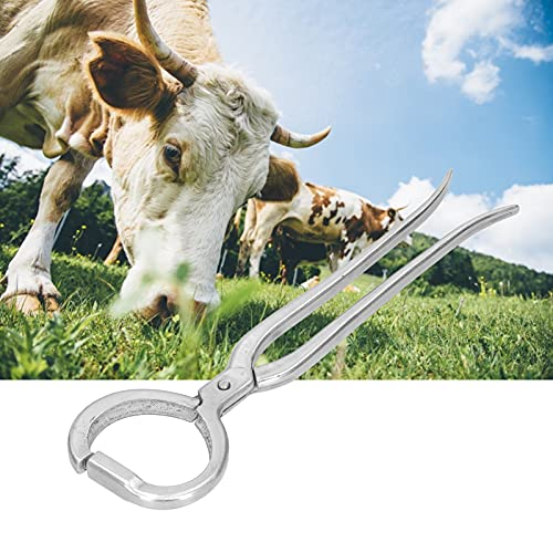 CUTULAMO Cadena de Anillo de Nariz, Anillos de Vaca Material de Acero Inoxidable para Pasto