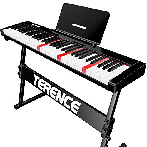 TERENCE Pianoforte Digitale 61 Tasti semi-pesati con batteria da 1800 mAh Tastiera illuminata e interfaccia MIDI USB e supporto per spartiti Bluetooth Supporti Borsa adesiva Cavo audio Auricolari