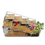 Betta Fish Tank Material Acrílico con Filtro de Energía, Mini Kits de Inicio de Acuario de Escritorio, Mini Goldfish Fish Tank Aislamiento de Habitación para Oficina En Casa