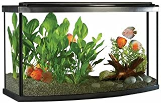 Best bow front fish tank Reviews