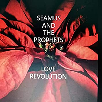 Love Revolution remix (remix) (remix)