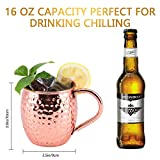 Zoom IMG-1 sikitut bicchieri rame moscow mule