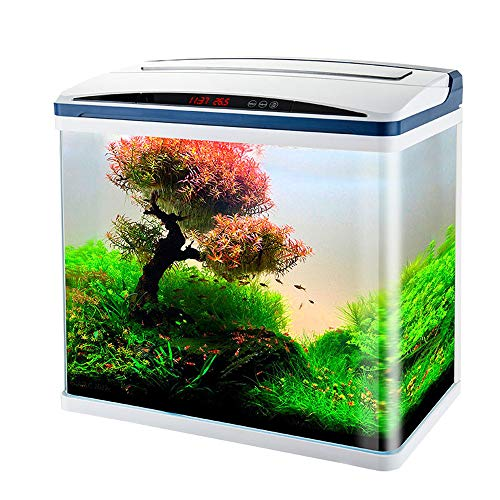 DPFXNN Aquarium Kit with Led Lighting and Power Filter, Digital Display, Hd Glass Touch Switch, Best Decoration for Home Desktop.
