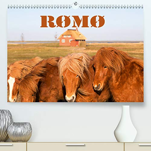Rømø(Premium, hochwertiger DIN A2 Wandkalender 2020, Kunstdruck in Hochglanz): Bilder von der südlichsten dänischen Wattenmeerinsel (Monatskalender, 14 Seiten ) (CALVENDO Orte)