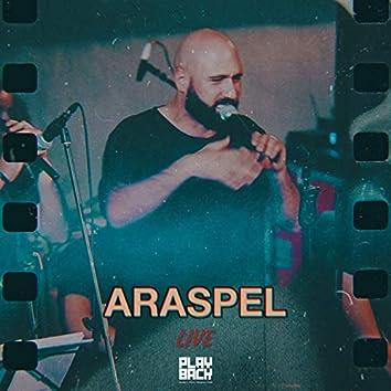 Araspel (Live)
