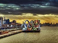 パズル500ピースジグソーパズルラージクラシック木製パズル減圧玩具オリンピックリングスポーツ