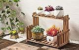 LY77 étagère à Fleurs Support de Plante en Bois 2 étage extérieur Balcon intérieur Bonsaï Plancher Suspendu - Bois Naturel