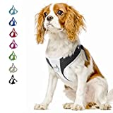 TwoEar Dog Harness Reflective Adjustable Basic Nylon Step in Puppy Vest Harness Outdoor Walking for X-Small Small and Medium Dogs Breed Pets(S, Black)