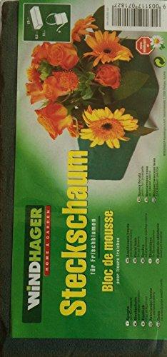 Windhager Bloc de Mousse pour Fleurs fraiches