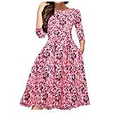 N\P Robe rétro à manches longues pour femme - Imprimé floral - Pour bal de fin d'année, fête, soirée - Multicolore - Rose -...
