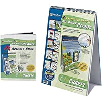 NewPath Learning 10 Piece All About Plants Curriculum Mastery Flip Chart Set Grade 5-10 [並行輸入品]