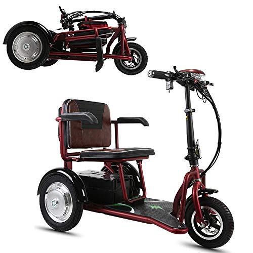 Plegable triciclo eléctrico 48V20A 55 kilometros de litio de la batería /...