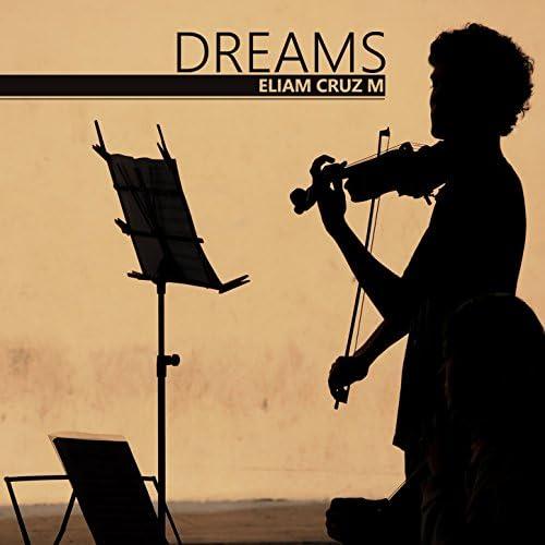 Eliam Cruz M