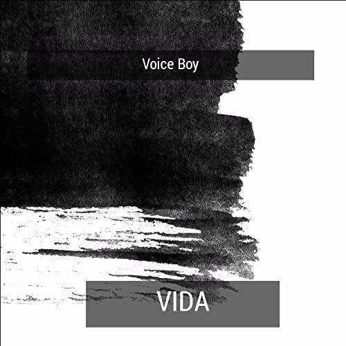 Voice Boy