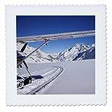 3dRose qs_69596_4 Ski Plane, Tasman Glacier, South Island,