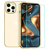 zelaxy Case Compatible with iPhone 12 / iPhone 12 Pro with Screen Protector, Clear Transparent Luxury Protective Electroplated Cover for iPhone 12 / iPhone 12 Pro 6.1 inch (Gold)