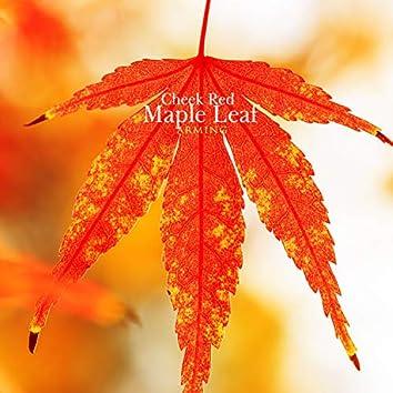 볼 빨간 단풍잎