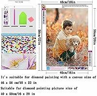DIY 5Dダイヤモンドペインティングキット-蝶の花-クロスステッチキット、モザイク作りの装飾ギフト(40 x 50cm / 16 x 20インチラウンドダイヤモンド)