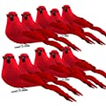 FUNARTY 10pcs 6-Inch Red Clip-on Cardinals Christmas Tree Ornaments Artificial Feathered Birds Ornaments for Christmas Decorations, Arts and Crafts