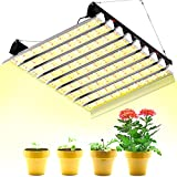SZHLUX 4000W LED Grow Light 6×6ft Coverage Dual Switch Full Spectrum Grow Lamp for Indoor Plants, Sunlight Plant Light 864 LEDs for Hydroponic Seedling Veg and Bloom Greenhouse Growing Light Fixtures