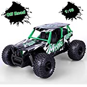 STOTOY RC Truck Remote Car,High Speed Off Road Monster Truck-1/16 Scale 2WD 2.4Ghz Radio Controlled Electric Truggy-Best Gift for, Green