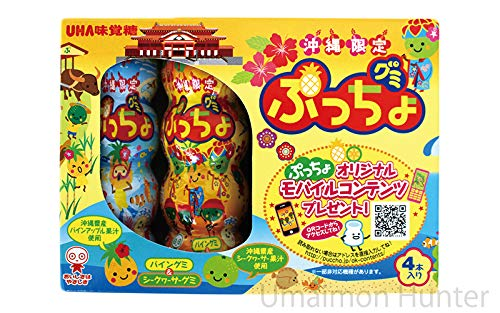 沖縄限定 ぷっちょグミ パイングミ&シークヮーサーグミ 4本入り×20箱 味覚糖 2種類のフルーツグミ 沖縄お土産
