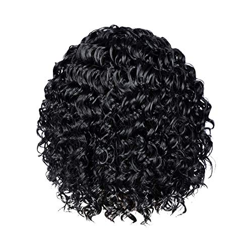 Peruvian Curly Wave Human Hair Lace Frontal Wigs for Black Women Human Hair Lace Front Wigs Pre Plucked with Baby...
