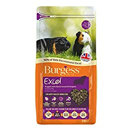 Excel Burgess Guinea Pig Nuggets Blackcurrant and Oregano, 2 kg