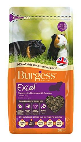 Excel Burgess Guinea Pig Nuggets Blackcurrant and Oregano, 2 kg