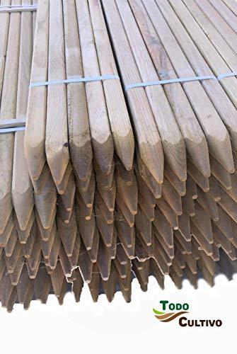 Todo Cultivo Tutor de Madera de Pino tratado de 40x40 mm. 1,5 m. de Altura. Pack de 10 Unidades. Destinado para arboles de Crecimiento vigoroso.