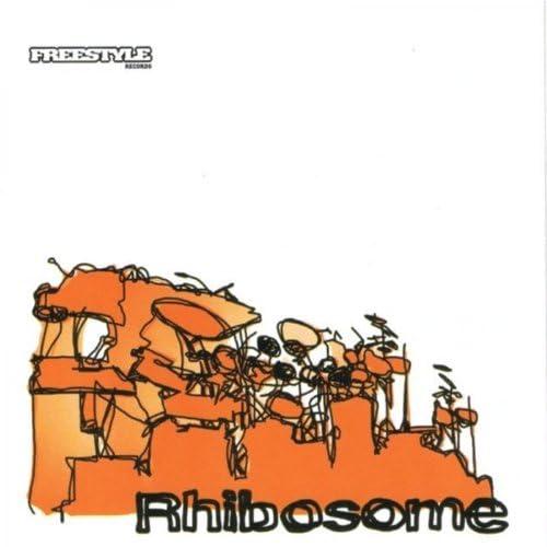 Rhibosome