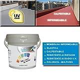 GUAINA Liquida Impermeabilizzante *GUAINA* Grigia/Bianca/Rossa da 5-20 Kg (5 Kg, Bianco)