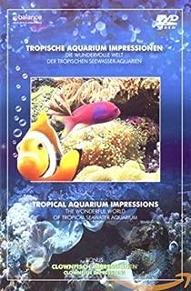 Tropical aquarium impressions