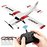 YRMJK RC Airplane,2.4GHz 2 Channels Easy to Fly Glider,Easy & Ready to Fly,Great Gift Toy for Adults or Advanced KidsToys with 2 Extra Batteries(3 Batteries)-T01