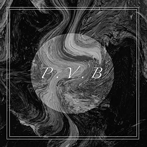 P.V.B