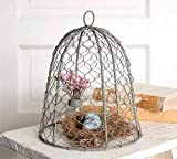 "Colonial Tin Works 840045T Chicken Wire 10"" Cloche Metal Rustic Farmhouse Gray"