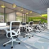 LINGZE Silla de Oficina de Malla de Tela, Silla de Escritorio giratoria ejecutiva para computadora con apoyabrazos Ajustables y Soporte Lumbar, Color Blanco