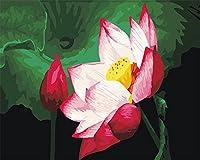 CaptainCrafts 新しい DIY 数字油絵 キット大人のための40 x 50 cmの絵画 初心者の子供たち -明るい蓮の花満開 (フレームレス)