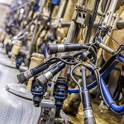 Zhat Zitzengummi, Tragbares, sicheres Teil, Praktisches Weiches für Melkmaschinen Melkbecher Gruppen Milchstände DIY