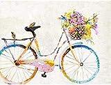 Pintura por números para adultos y niños Kit de pintura al óleo de bricolaje para principiantes Kits de flores de bicicleta multicolores sobre lienzo Decoración de pared de acrílico 40x50cm