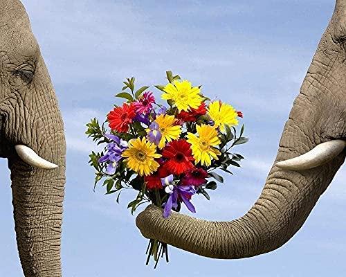 lidl erbjudande blommor